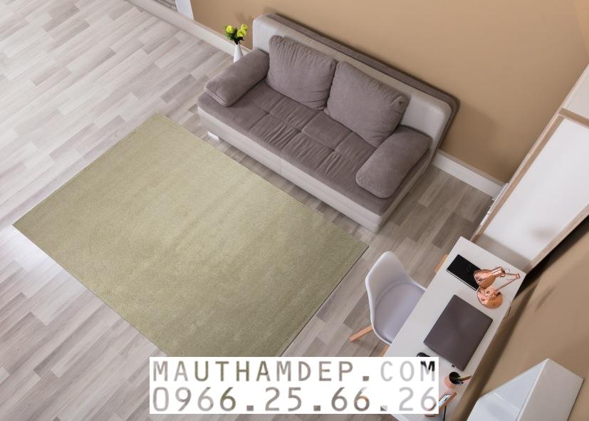 Tổng đại lý Thảm trang trí - Thảm sofa nhập khẩu - C0018