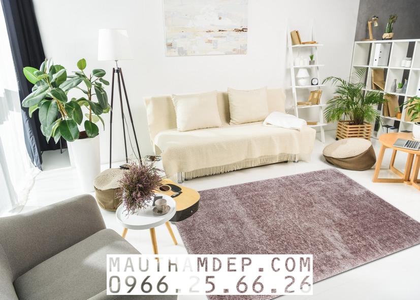 Tổng đại lý Thảm trang trí - Thảm sofa nhập khẩu - S0043