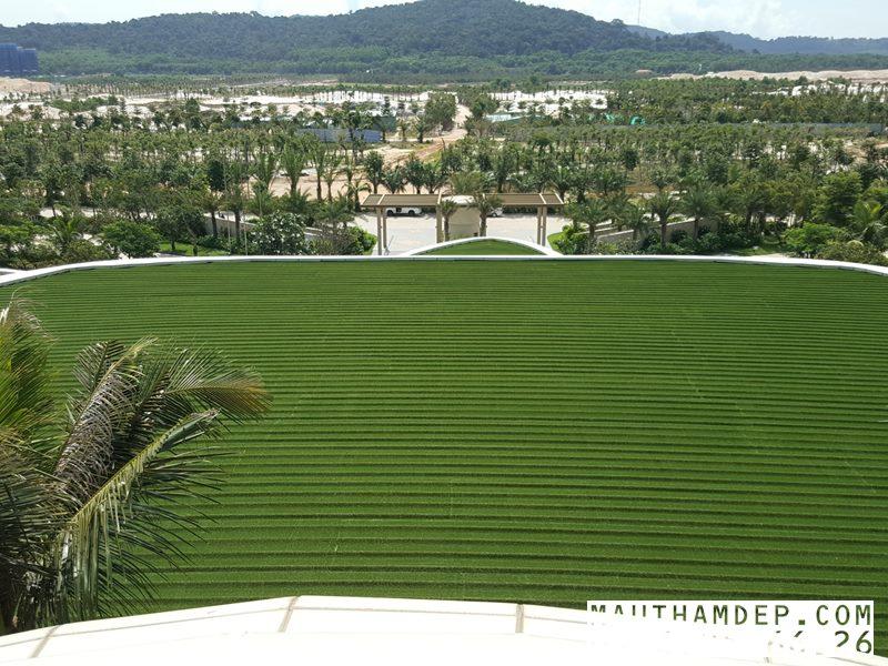Thi công thảm cỏ nhân tạo trên toàn quốc